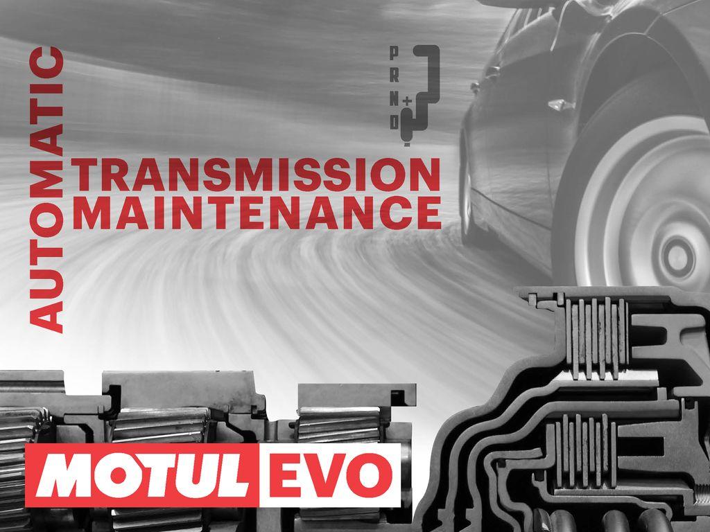 Новый веб-сайт и база данных MotulEvo на motulevo.com